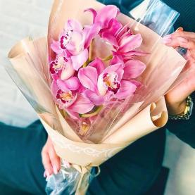 9 Розовых Орхидей на ветке фото