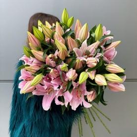 9 Розовых Восточных Лилий фото