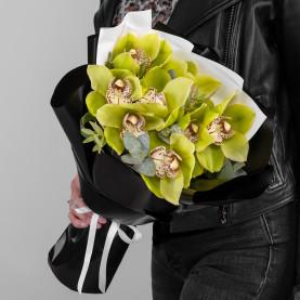 9 Зеленых Орхидей фото