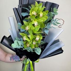 Ветка Зелёной Орхидеи фото