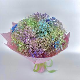 11 Разноцветных Гипсофил фото