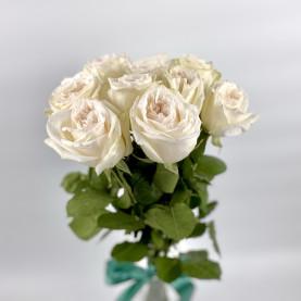 9 Пионовидных Роз White Ohara (50 см.) фото