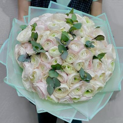 101 Нежно-Розовый Ранункулюс фото