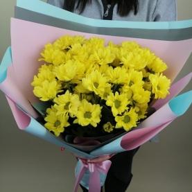 9 Жёлтых Кустовых Хризантем фото