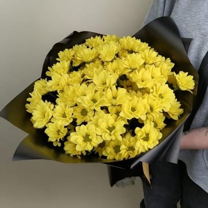 11 Жёлтых Кустовых Хризантем фото
