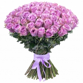 151 Сиреневая Роза