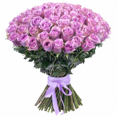 151 Сиреневая Роза фото