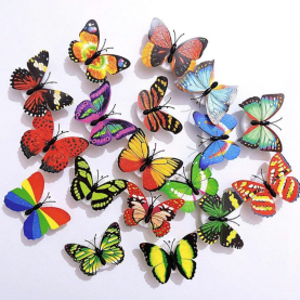 Бабочки фото