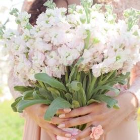 """Букет невесты """"11 Маттиол"""" фото"""