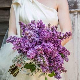 """Букет Невесты """"Ранняя Весна"""" фото"""