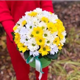 """Букет """"Желто-Белые Хризантемы"""" фото"""