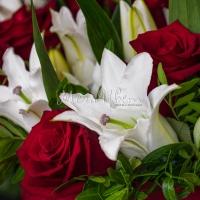 Какие цветы подарить в ноябре