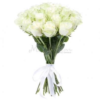 25 Белых Роз фото