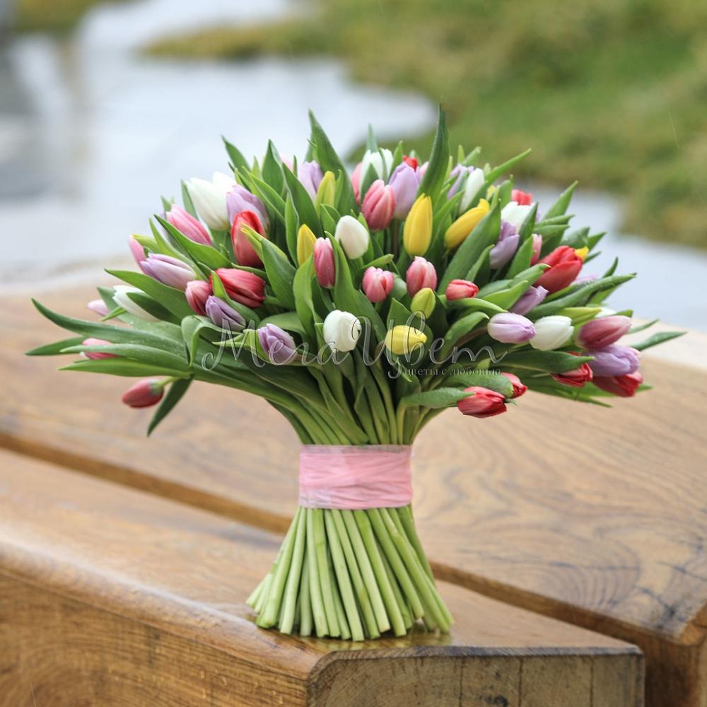 101 Разноцветный Тюльпан фото