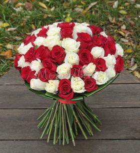 65 Бело-Красных Роз фото