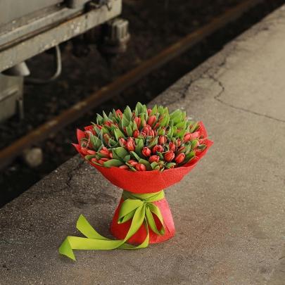 101 Красный Тюльпан  фото