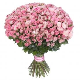101 Розовая Роза Кустовая фото