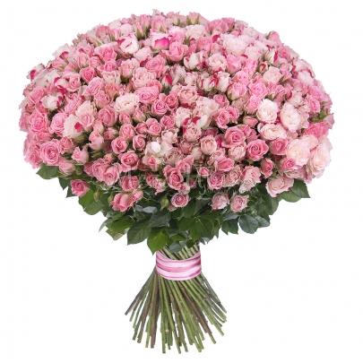 101 Кустовая Розовая Роза (50 см.)