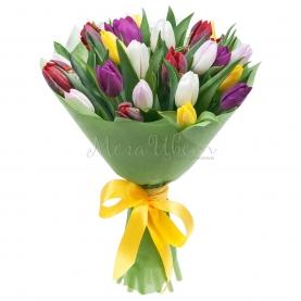 25 Разноцветных Тюльпанов фото