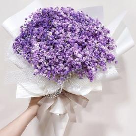 15 Фиолетовых Гипсофил фото