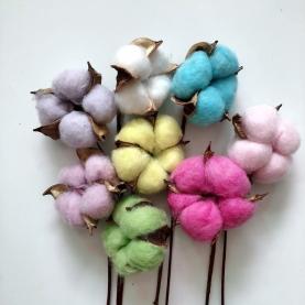 Хлопок Цветной (1 цветок) фото