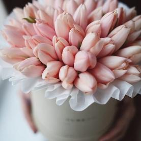 """Коробка """"Розовый Тюльпан"""" фото"""