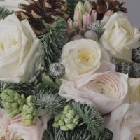 Какие цветы подарить в декабре