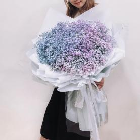 35 Нежно-Голубых и Фиолетовых Гипсофил фото