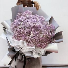 35 Нежно-Фиолетовых Гипсофил фото
