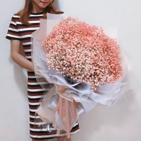 35 Нежно-Оранжевых Гипсофил фото
