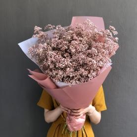 45 Нежно-Розовых Гипсофил фото