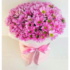 15 Розовых Кустовых Хризантем в коробке фото