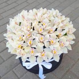 "Шляпная коробка ""41 Белая Орхидея"" фото"