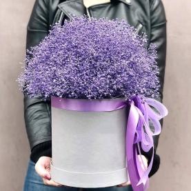 """Шляпная коробка """"19 Фиолетовых Гипсофил"""" фото"""