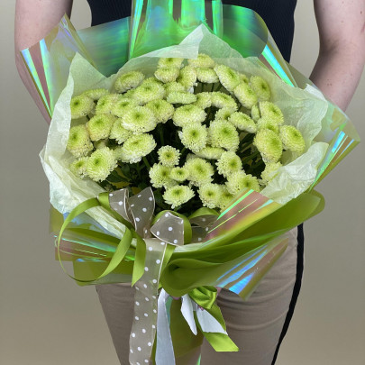 9 Зеленых Хризантем Сантини фото