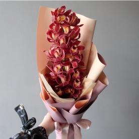 Ветка Коричневой Орхидеи фото