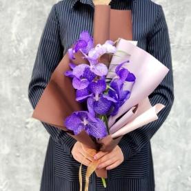 Ветка Орхидеи Ванда фото