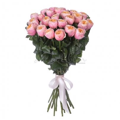 25 Пионовидных Розовых Роз (60 см.) фото
