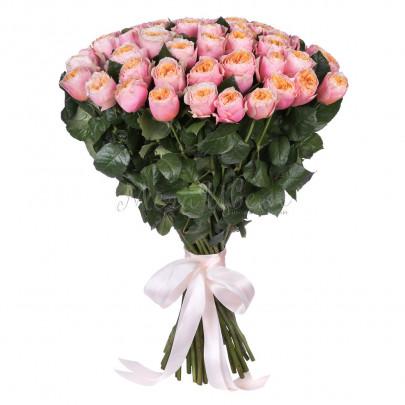 51 Розовая Роза Пионовидная (50/60 см.) фото