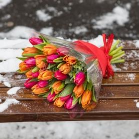 35 Тюльпанов разноцветных фото