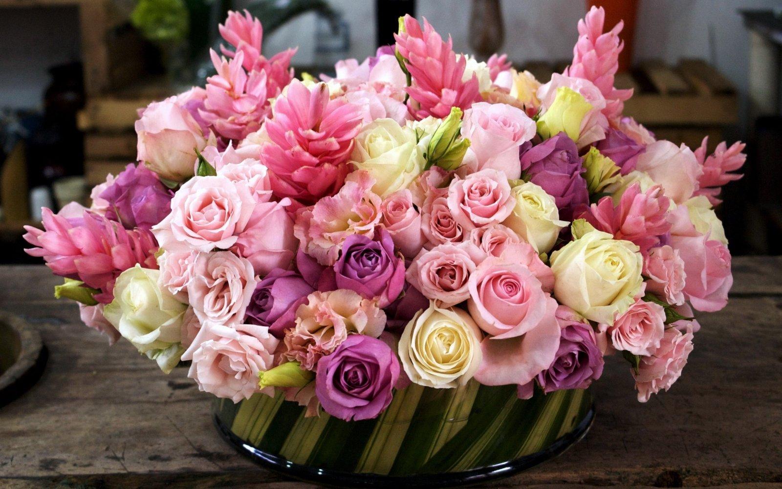 цветы под знаком зодиака
