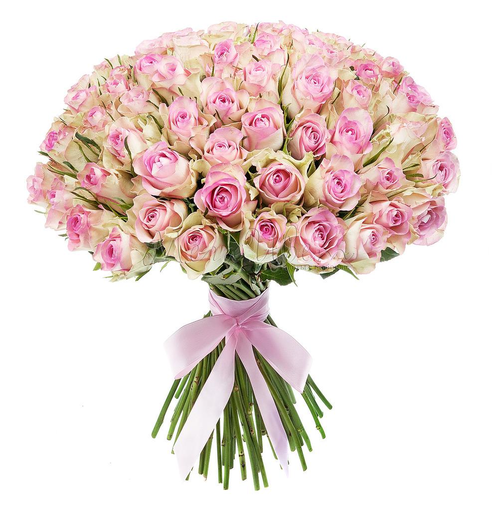 Букет Розовых роз, 101 шт фото