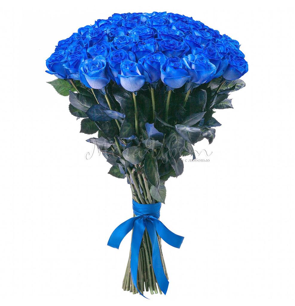 Букет Синих роз, 51 шт фото