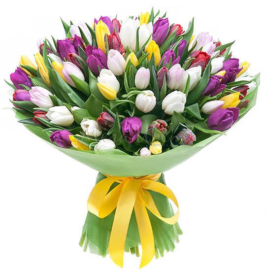 Букет Тюльпанов, 101 шт фото